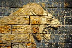 Roaring Lion from Nebuchadnezzar II's Palace (Sumer and Akkad!) Tags: lion roaringlion striding babylon nebuchadnezzar throneroom glazedbrick iraq mesopotamia babel