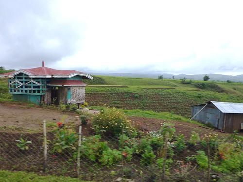 Negros-San Carlos-Bacolod (87)