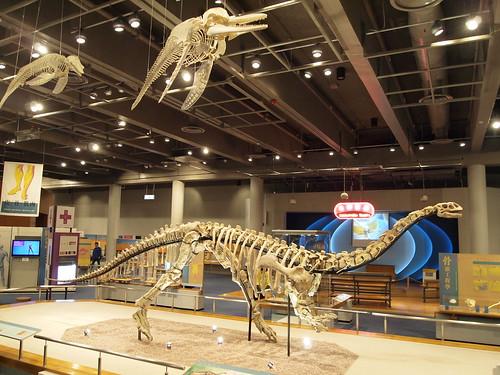 Dinosaurs in Hong Kong Museum of Science