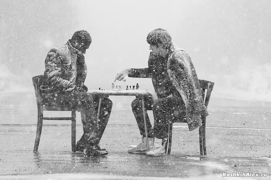 Шахматы под снегом 2569