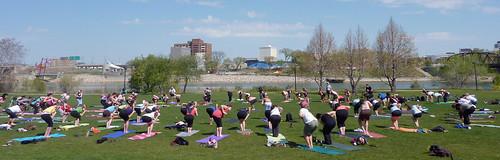 free-yoga-may16