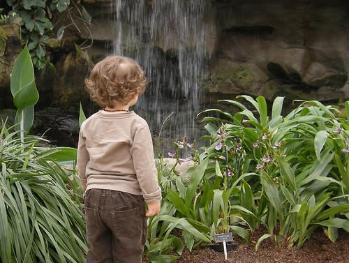 buggywaterfall