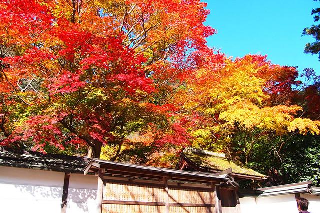 20101119_130733_室生寺