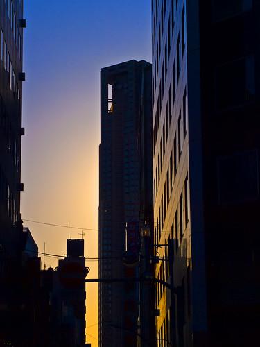 Evening of Shinjuku Tokyo metropolitan government_新宿都庁の夕暮れ
