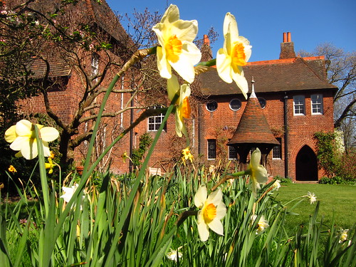 Daffodils at Red House