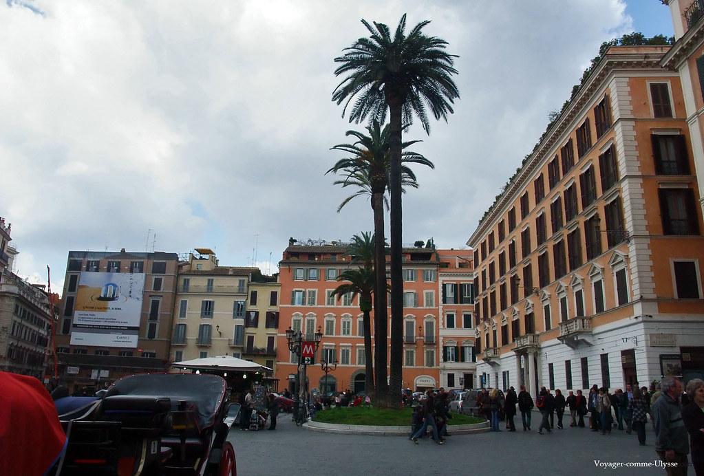 Juste à coté du métro, des palmiers imposants dominent la place