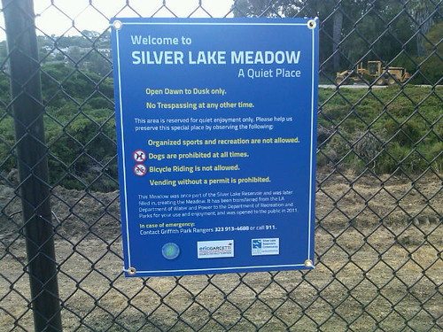 Silver Lake meadow