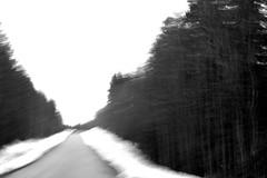 (eeviko) Tags: road bw white snow black forest suomi finland grey countryside blackwhite spring movement tie noise lumi lanscape maisema mets kevt lieksa maaseutu pohjoiskarjala nurmes mustavalkoinen northkarelia easternfinland itsuomi kohina 1042011 kuohatti egyptinkorpi
