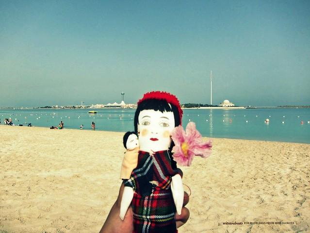 sandy iggy in corniche beach