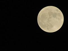 sognando la Luna (♫ *janas65* ♫) Tags: sky italy moon beautiful canon italia free luna enjoylife emozioni wonderfulworld mywinners abigfave yourcountry olétusfotos allegrisinasceosidiventa theauthorsplaza gigilivornosfriends