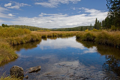 Gibbon River (bhophotos) Tags: trip travel blue trees vacation usa reflection nature water clouds river landscape geotagged nikon peaceful yellowstonenationalpark yellowstone serene wyoming nikkor ynp gibbonriver d700 2470mmf28g virginiameadows bruceoakley