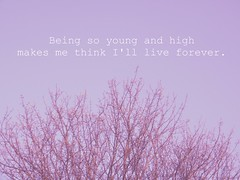 being so young and high makes me think I'll live forever. (Charlotte McKnight) Tags: wood pink sky white tree art nature girl fashion youth outdoors photography blog words lyrics kid high soft pretty berries purple branches awesome text hipster young teens social books calm fresh teen ethereal indie rebellion fujifilm dreamy network delicate liveforever angst teenage facebook twiter tumblr charlottemcknight