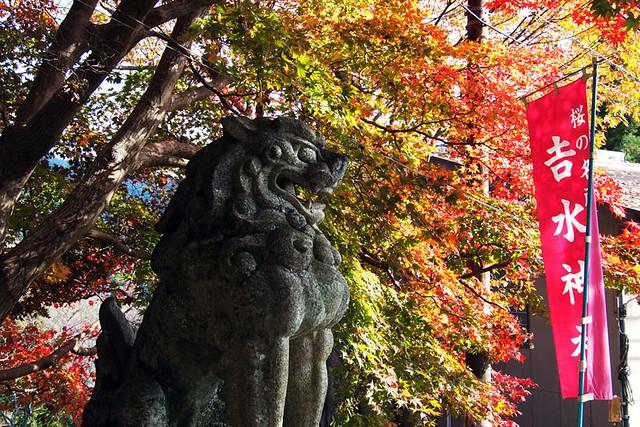 20101120_133519_吉野山_吉水神社