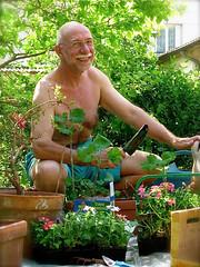 Bernard 219 (bernard-paris) Tags: bernard jardin plantation potdefleurs