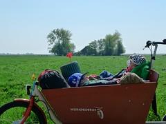 bakfiets-tocht-noord-holland 4 (@WorkCycles) Tags: holland bike bicycle kids easter children tour kinderen bikes noordholland toch broekinwaterland bakfiets northholland workcycles