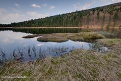 _1050412_3_4_5_6_7_8-Bearbeitet.jpg (Andreas Wistuba) Tags: deutschland bayerischerwald 2011
