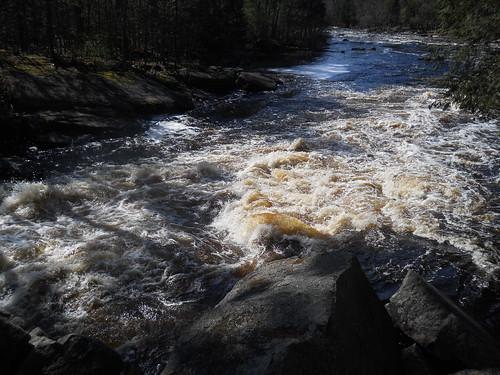 Peshtigo River Horserace Rapids