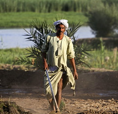 Local making a garden on Banana Island on the West bank of the Nile, Luxor, Egypt. (David IFA) Tags: man canon river garden farmers egypt nile 7d luxor canonef70200mmf4lusm