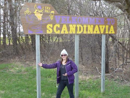 Scandanavia - Katy