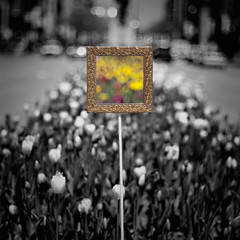 Michigan Avenue Monet (mckenziemedia) Tags: chicago blur color canon painting eos illinois dof traffic bokeh michigan 100mm frame 5d 28 avenue f28 magnificent mile meyer selective oof optik trioplan