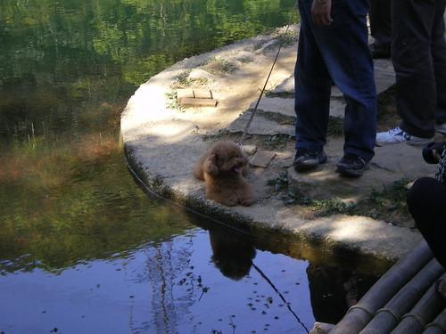 20110424汐止新山夢湖