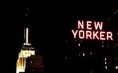 nyc (martem@r) Tags: city nyc newyork night skyscraper skyscrapers manhattan newyorker empire empirestatebuilding grattacielo notte notturno grattacieli martemar1 martemr