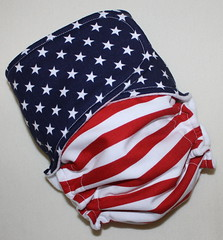 Stars and Stripes Skinny Britches AI2
