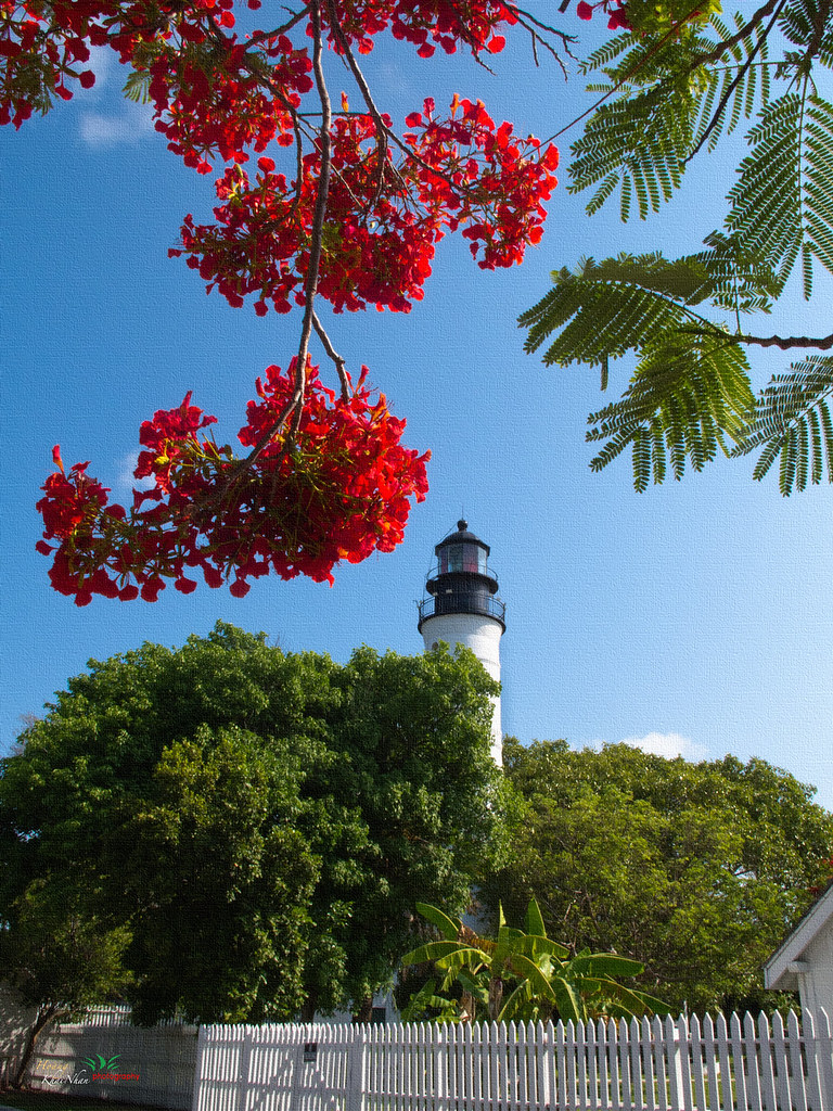 2011-05  Florida Keys