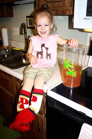 Autumn-with-lemonade-and-my-socks
