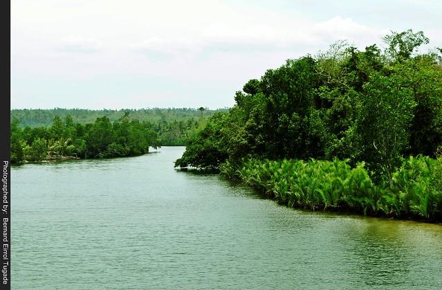 Balingasay River 18