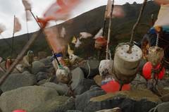 Lobster festival (lifeonnosense) Tags: buoyant
