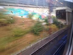 [84/365] Rain on window (aggypictures) Tags: iphone365 iphone københavn kbh cph copenhagen tracks rain window train stog strain