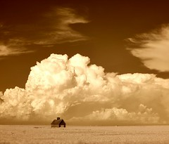 Lonely Barn with Big Sky (Neal3K) Tags: barns rural fields sky infraredcamera ir 720nmfilter kolarivisionmodifiedcamera bw blackandwhite brilliant wow sepia horizon cirrus cumulus
