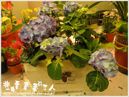 花團錦簇繡生活 (1)