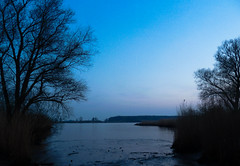 Blue Hour (Channed) Tags: blue holland river twilight nederland thenetherlands explore bluehour maas oudemaas rivier demaas schemer barendrecht dwan explored chantalnederstigt