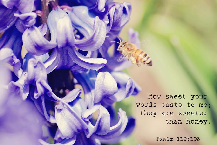Psalm 119:103
