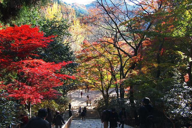 20101119_140102_室生寺