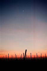 Arriva la notte (warioxin) Tags: sunset sun night tramonto minolta notte x700 5017