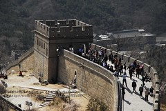 Looking Down The Great Wall