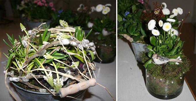 gröna växter2