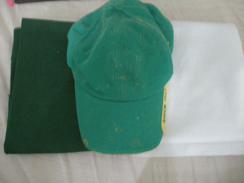 how to make a luigi hat