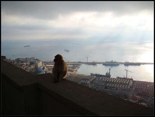 Mirador de los Monos (4)