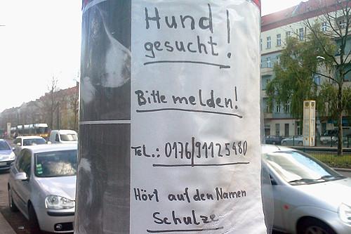 Schulze gesucht