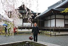 DSC_0398 (yhshangkuan) Tags: japan spring kyoto blossom arashiyama bloom  cherryblossom sakura    fullbloom 2011 tenryujitemple