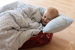 What I Found In Our Laundry (Prozac74) Tags: home joy laundry getty laundrybasket enjoyment cosy gettyimages lair fullsize canonef100mmf28macrousm activeassignmentweekly bestofweek1 bestofweek2 bestofweek3 canoneos5dmarkii prozac09 glrfamily2011