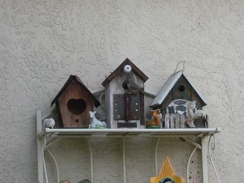 1birdhouse doris petersen san ramon