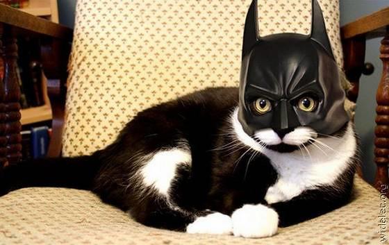 batman-fan41