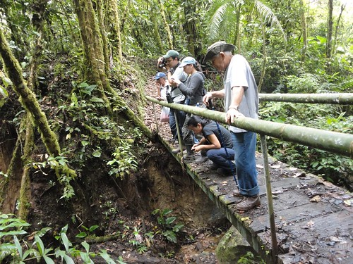 Caminata Río Java