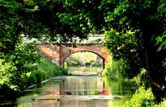ponte SS.QUARANTA e il fossato di Città (aldofurlanetto) Tags: ponte ssquaranta