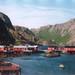 Nussfjord, Nordland Fylke, NO